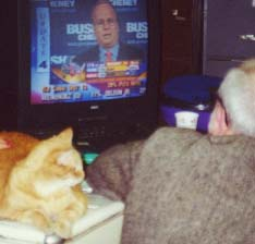 Awaiting the returns with David, election night 2000. Photo by Ruth Benn.