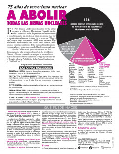 FY2021 Pie Chart in Spanish - back