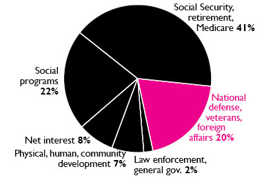 FY2021 Pie Chart - Government Deception graphic