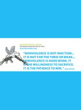 What is Nonviolence?